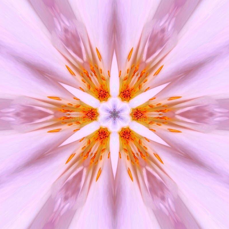 Esticar Kaleidoscope Editar com Flores Rosa ilustração royalty free