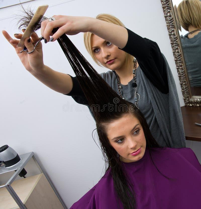 Estilista de cabelo no trabalho imagens de stock