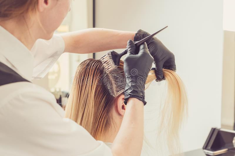 Estilista de sexo femenino que aplica un tinte al pelo de los clientes foto de archivo libre de regalías