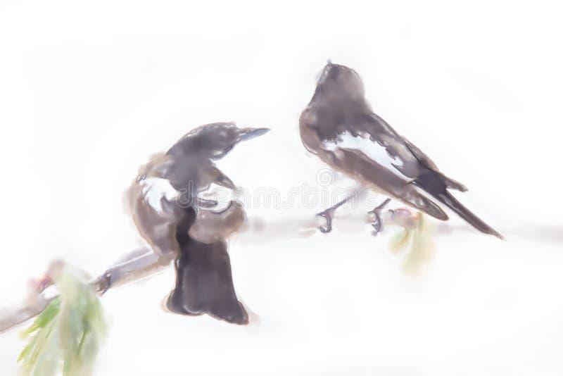 estilo da aquarela dos desenhos Papas-moscas no amor ilustração royalty free