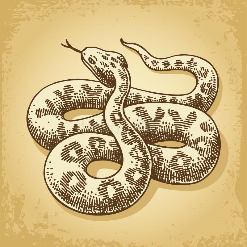 Vetor da ilustração da serpente à terra ilustração stock
