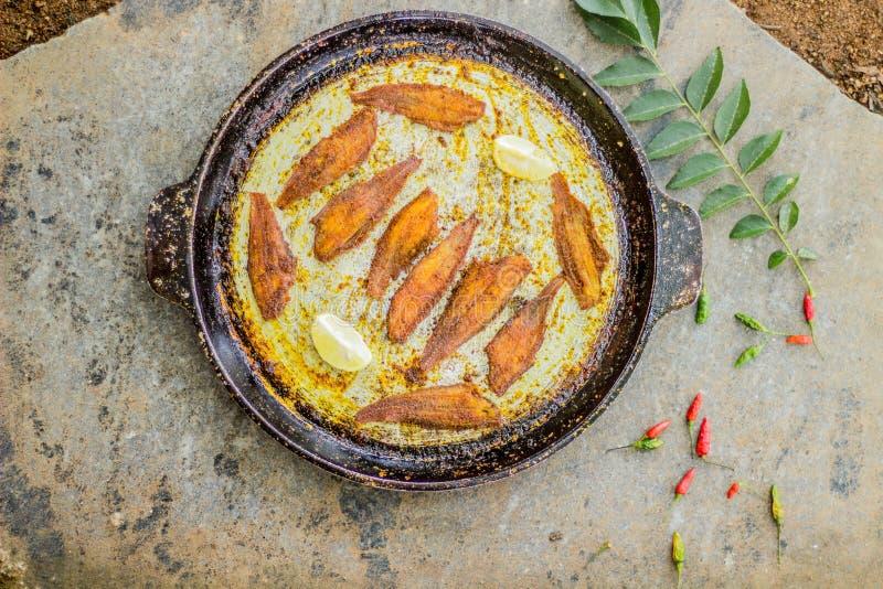 Estilo de kerala do peixe frito - fotografia do alimento imagem de stock royalty free