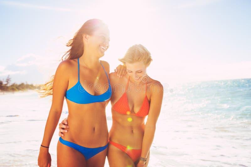 Estilo de vida do verão, amigos na praia imagem de stock