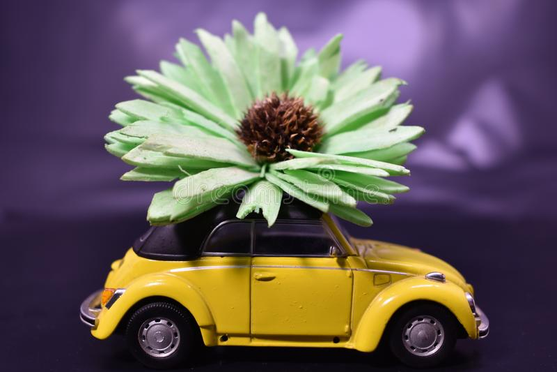 Estilo de vida e carros da hippie fotografia de stock