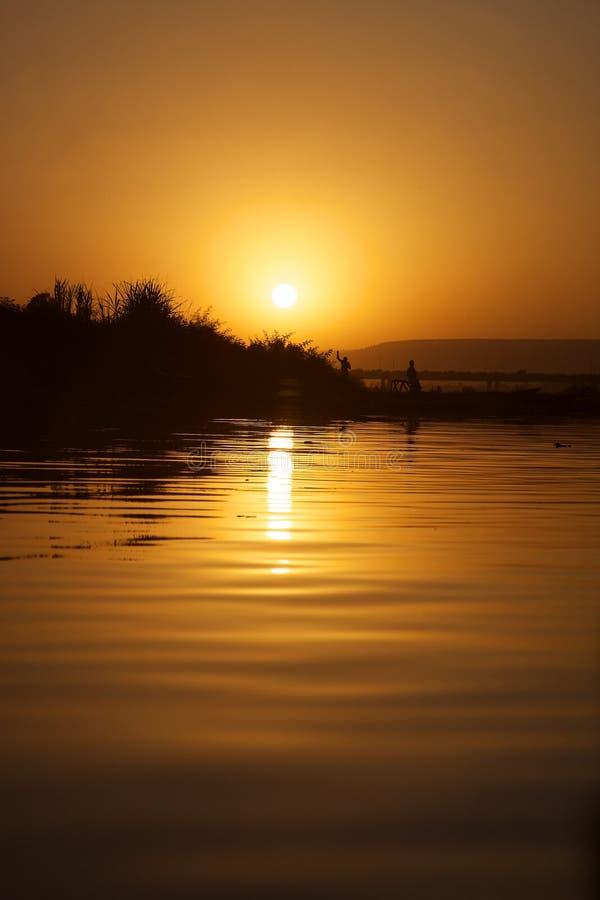 Estilo de vida no delta de Niger fotografia de stock royalty free