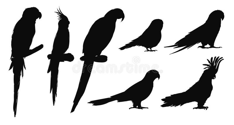 Estilo del dibujo del ejemplo de la colección de los pájaros del loro libre illustration