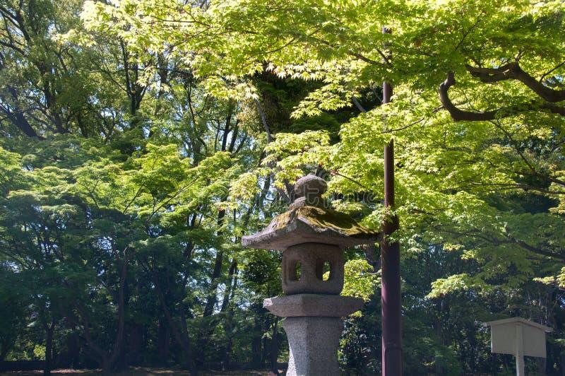 Estilo del polo del zen con el árbol fotografía de archivo libre de regalías
