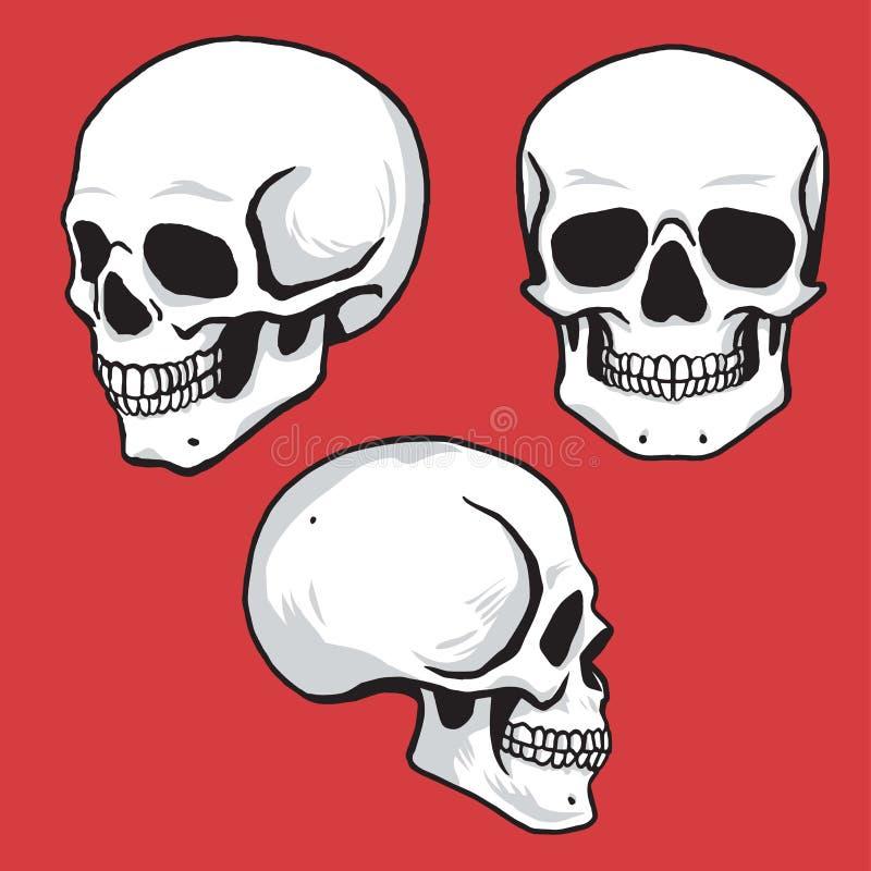 Estilo disponible fijado cráneo del dibujo stock de ilustración
