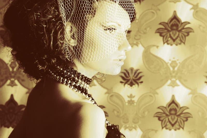 Estilo do vintage imagem de stock royalty free
