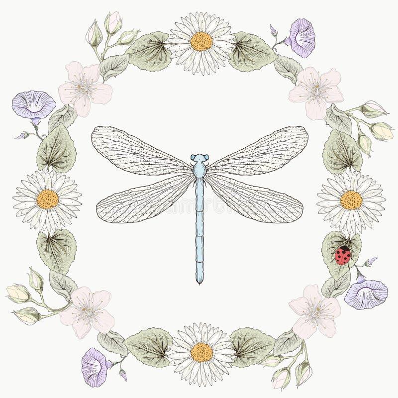 Estilo floral da gravura do vintage do quadro e da libélula ilustração stock