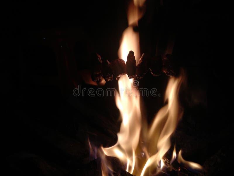 Estilo indiano da carne de porco do fumo da vila do fundo do fogo imagem de stock royalty free