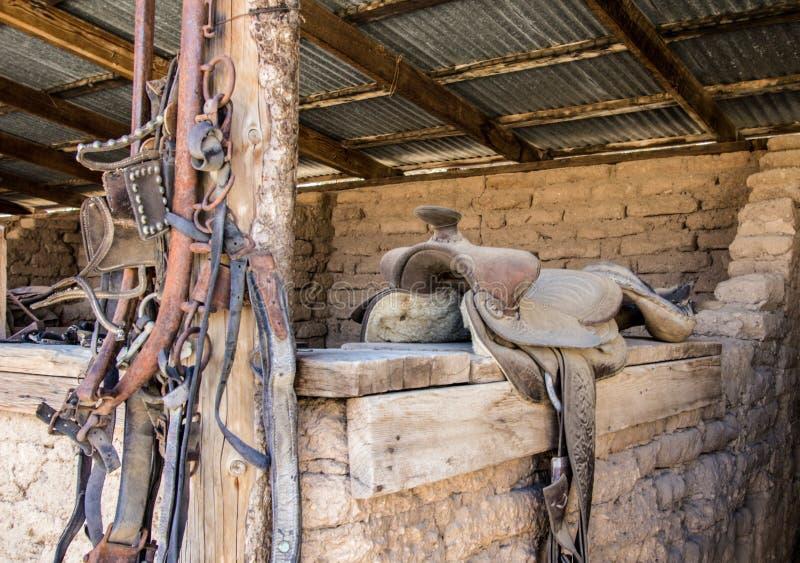 Estilo Ocidental Tacha De Cavalo Em Barão imagens de stock