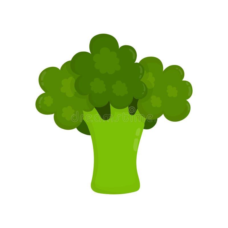 Estilo plano moderno del vector crudo del bróculi stock de ilustración