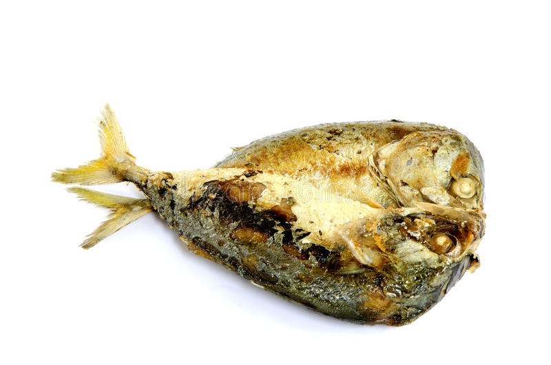 Estilo tailandês peixes fritados da cavala. fotografia de stock royalty free