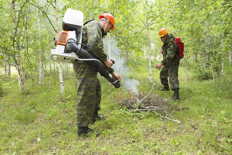 Estinzione di incendio nella foresta immagine stock