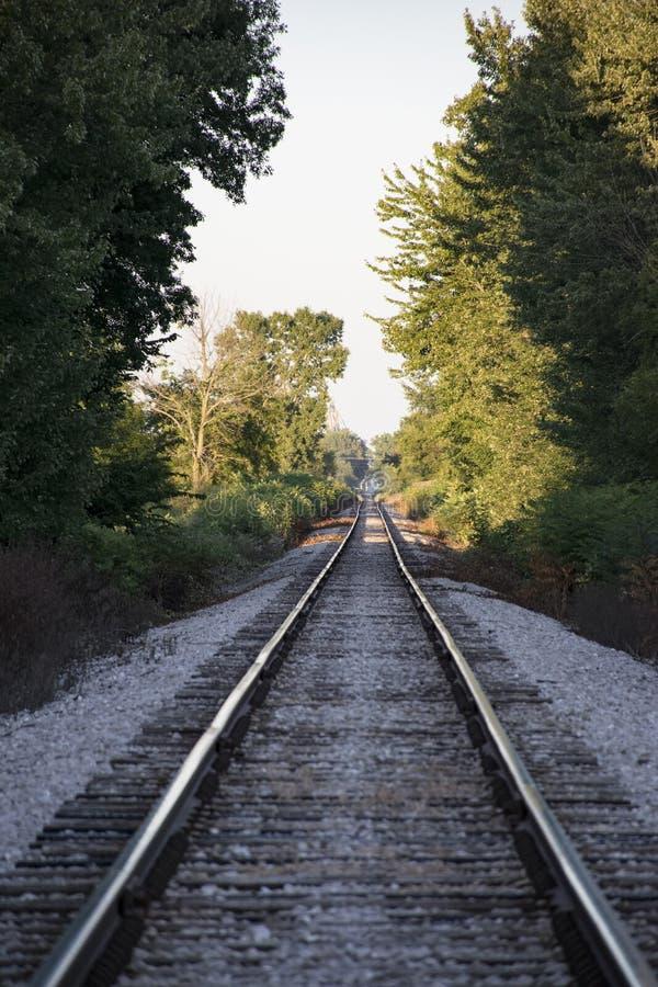 Estiramento arborizado só de trilhas do trem imagem de stock