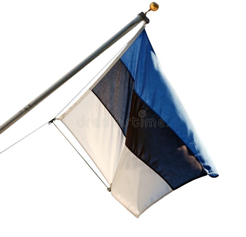 Estländsk nationsflagga royaltyfri foto