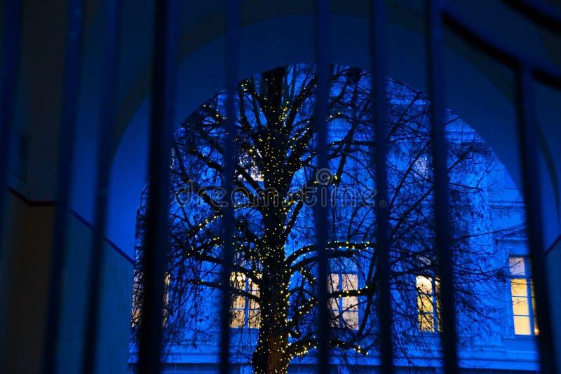 Estländskt Tallinn: Blått landskap för härlig natt med staket- och trädkonturn Det gula ljuset från fönstret arkivbild