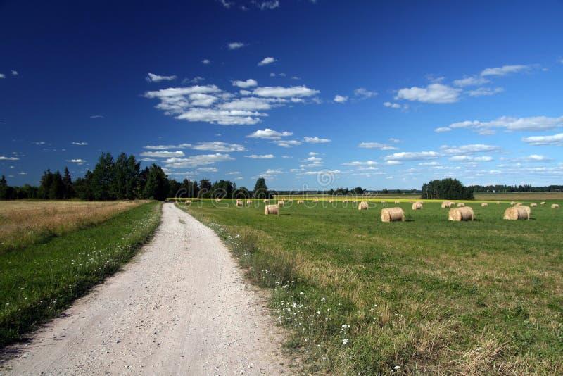 Estlands landschap stock fotografie