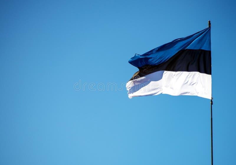 Estlandse vlag stock afbeeldingen