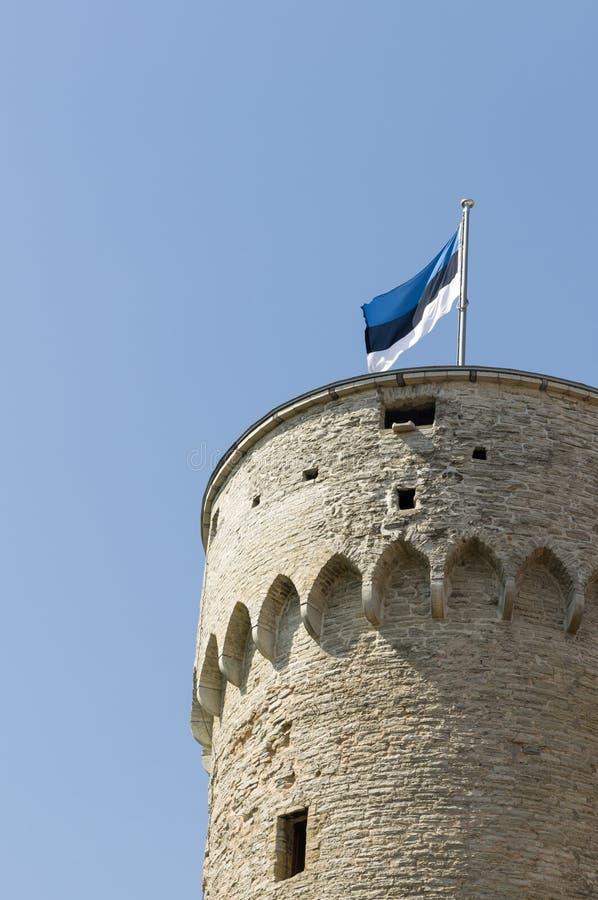 Estlandse Vlag Op Lange Hermann Royalty-vrije Stock Foto