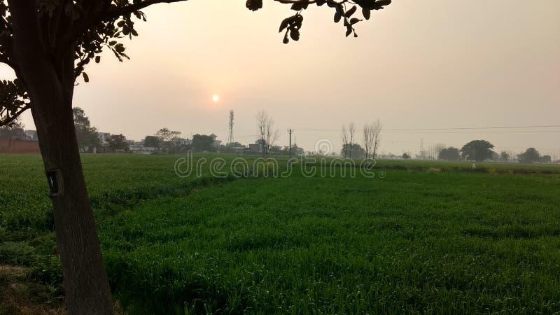 Esto el imagen hermosa de la puesta del sol en el campo de mi pueblo fotos de archivo