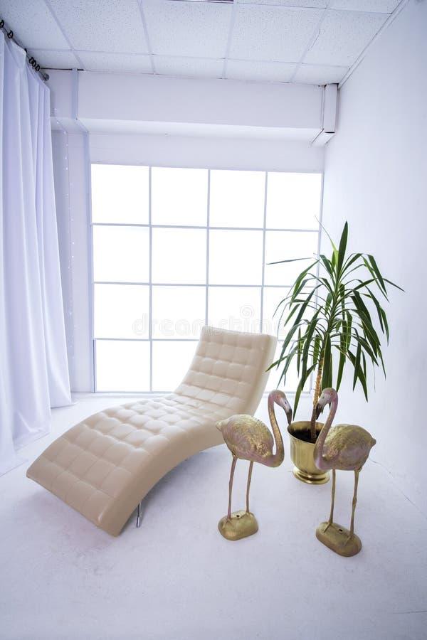 Estofado em uma sala branca com janela foto de stock