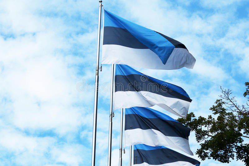 Estonia flaga Tallinn estonia Nirdic, Bałtycki zdjęcia royalty free