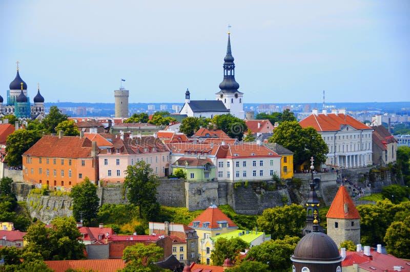 estonia roofs gammal red tallinn fotografering för bildbyråer