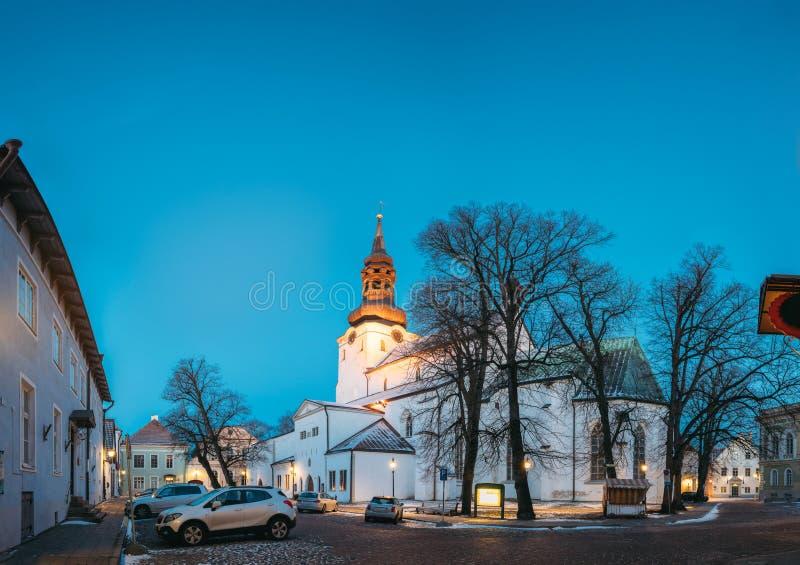 estonia tallinn Berömd gränsmärkedomkyrka av den helgonMary The Virgin Or Dome kyrkan eller Toomkirik i gatabelysning på royaltyfri foto