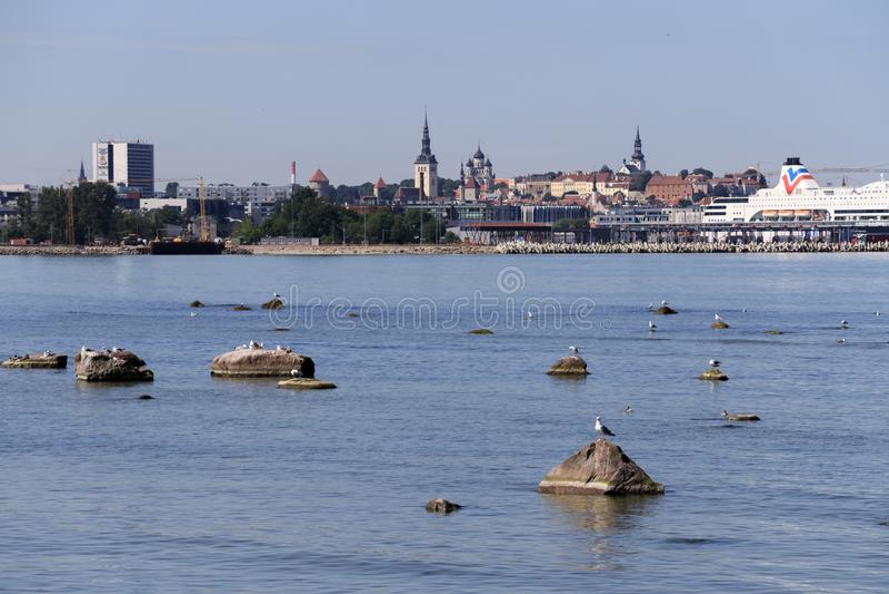 estonia tallinn Horisont av Tallinn, bl?tt g?r klar himmel p? Sunny Day Sikt fr?n havet, golf av Finland arkivbild