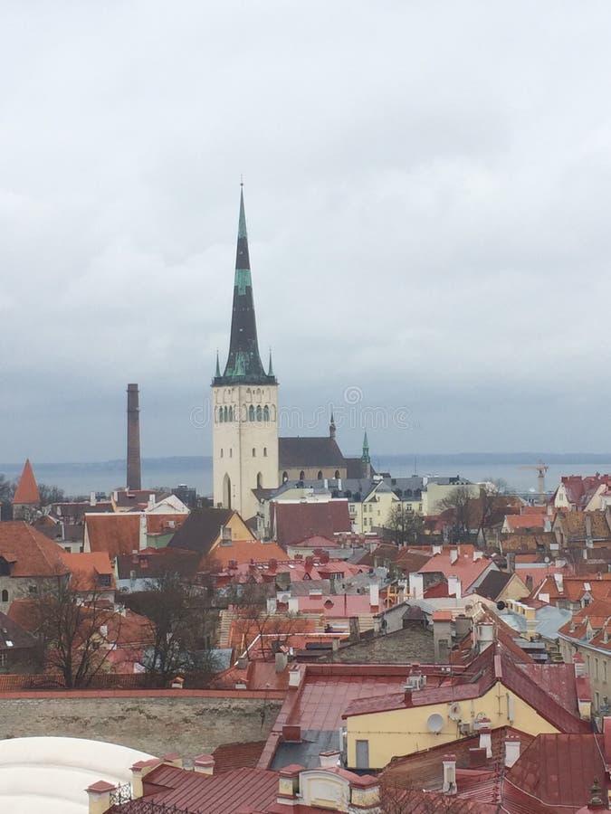 estonian royaltyfri foto