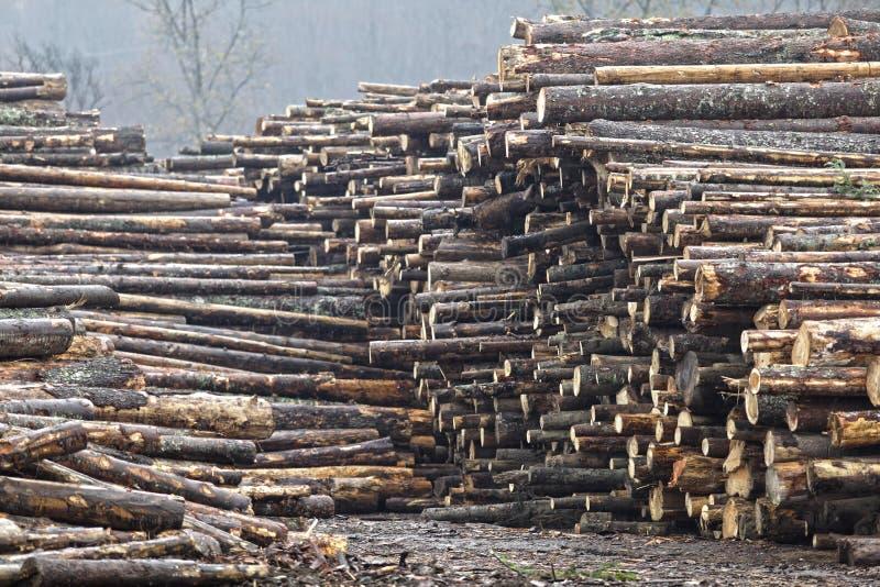Estoque de madeira fotografia de stock