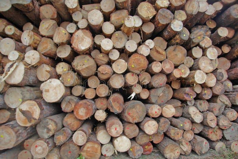 Estoque de madeira imagens de stock