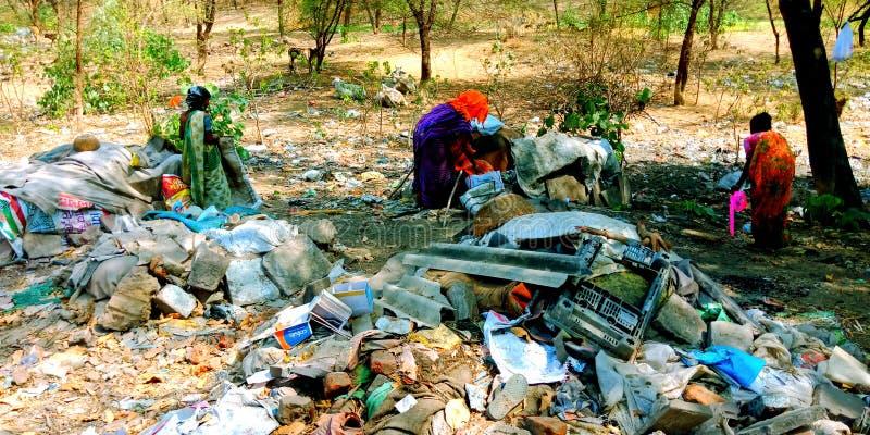 Estoque do lixo da cidade na foto do estoque da floresta foto de stock royalty free