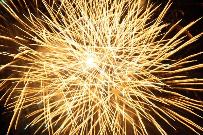 Estouro amarelo dos fogos-de-artifício fotografia de stock royalty free