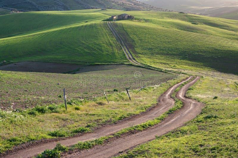 Estrada à exploração agrícola velha fotografia de stock royalty free