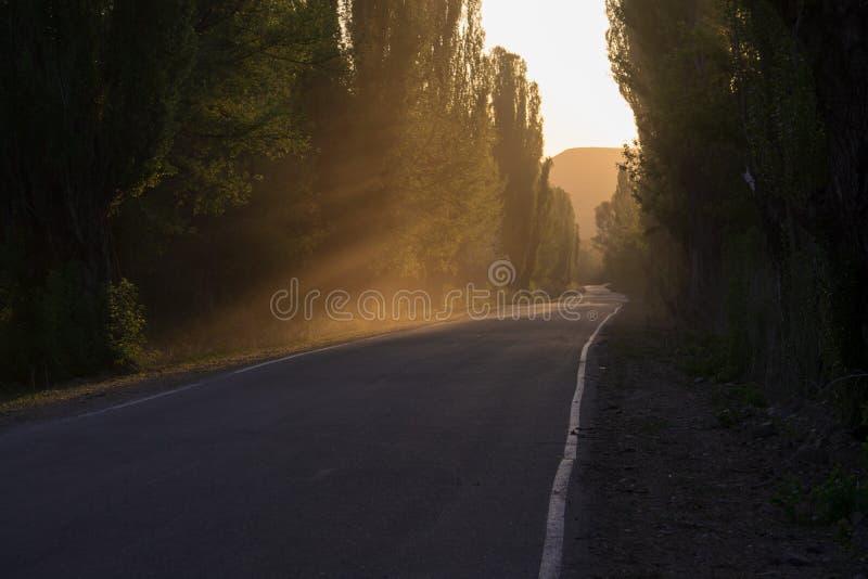 A estrada é quieta Fumo perspective fotografia de stock royalty free
