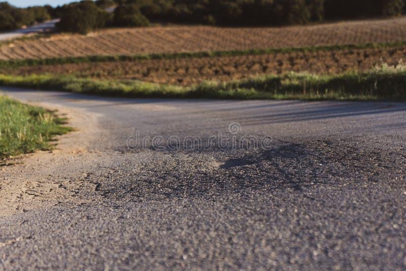 Estrada asfaltada gasta entre campos verdes na mola O tempo de mola? aumentou as folhas, fundo natural fotos de stock