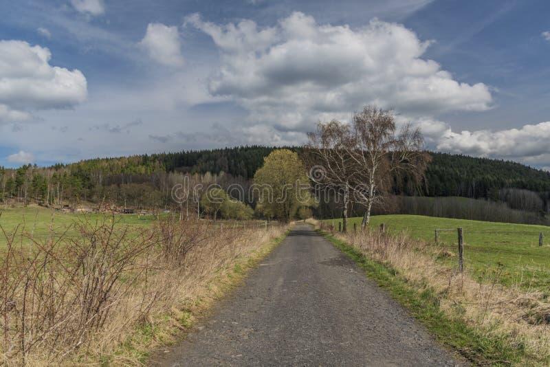 A estrada asfaltada perto dos prados e da terra de pasto no dia de mola imagem de stock