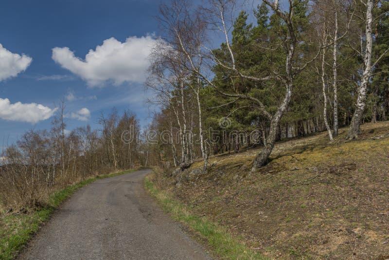 A estrada asfaltada perto dos prados e da terra de pasto no dia de mola fotos de stock