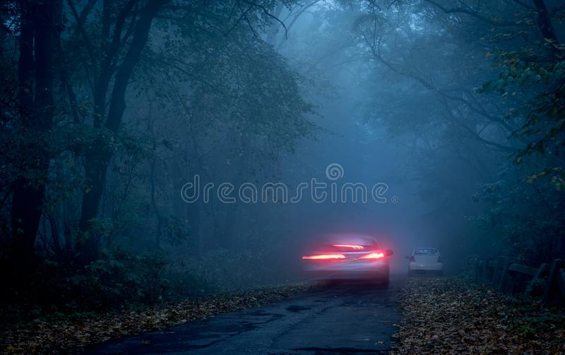 Estrada através de uma floresta escura na noite imagem de stock royalty free