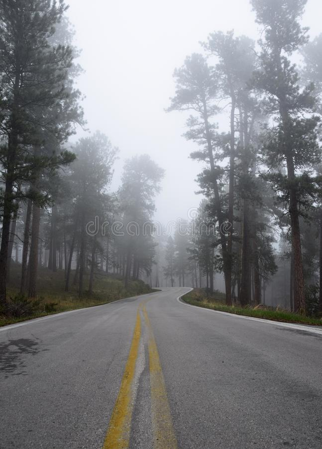Estrada através do Black Hills 2 fotografia de stock