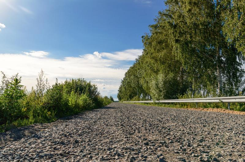 A estrada através do campo ao longo dos vidoeiros foto de stock