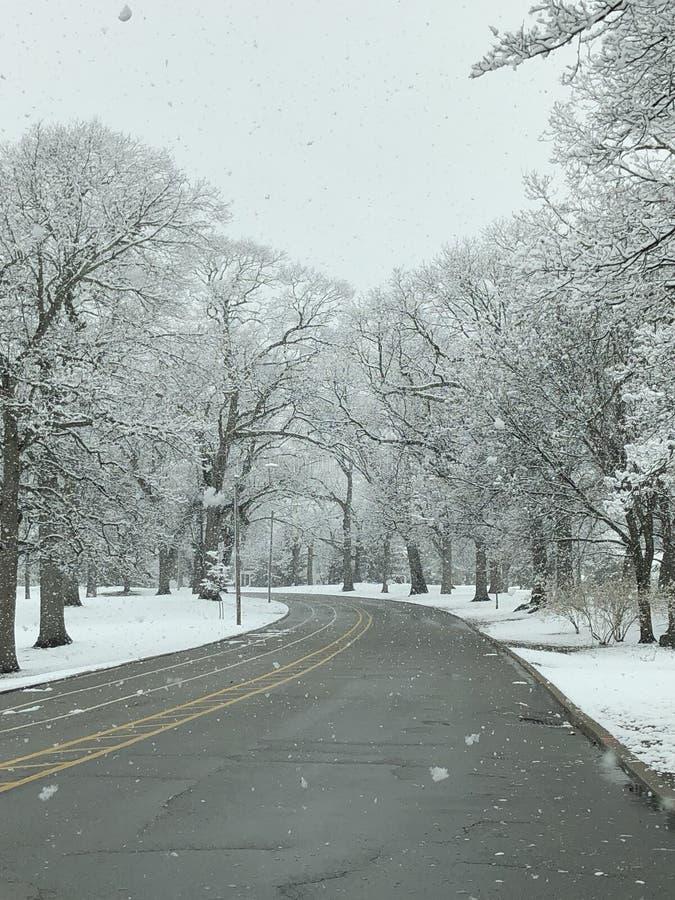 Estrada atrav?s da neve imagens de stock royalty free