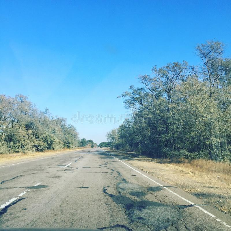 estrada bonita através da floresta fotos de stock