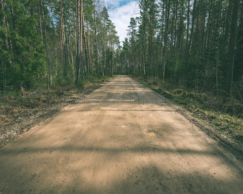 estrada cênico e bonita na floresta - filme e do turismo do vintage fotografia de stock