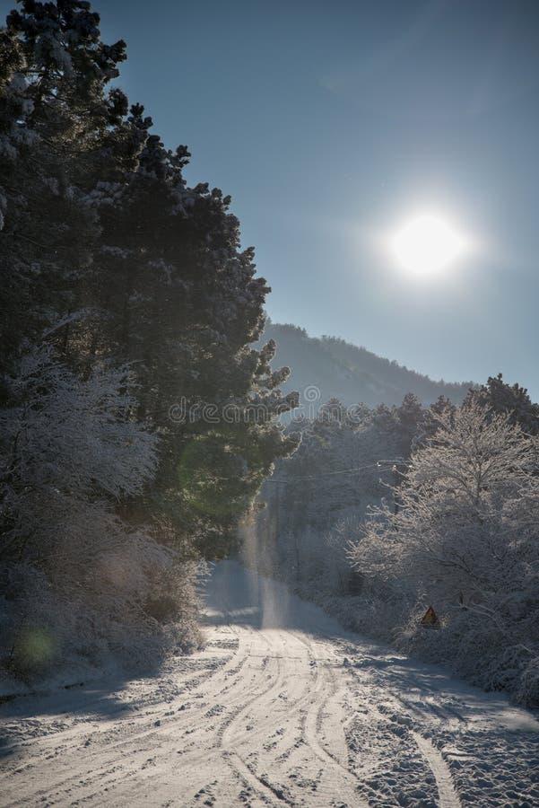 Estrada coberta com a neve Trilhas do pneu de carro na neve na rua imagem de stock royalty free