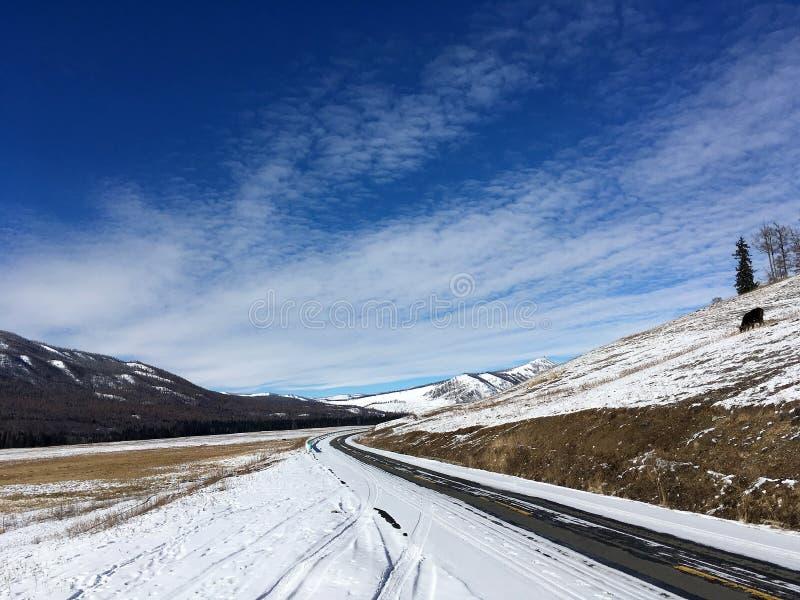 Estrada coberto de neve a Kanas no inverno fotografia de stock royalty free