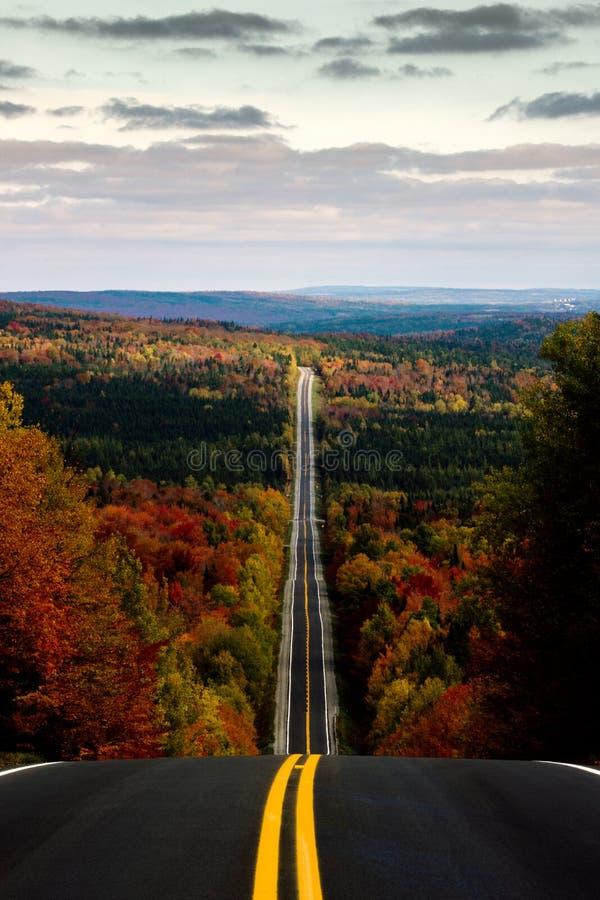 Estrada com o outono fotos de stock